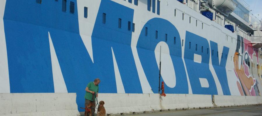 MeinFerienhund - auf der Moby