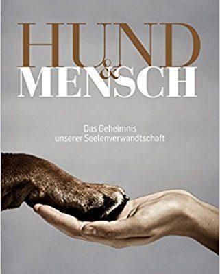 MeinFerienhund - Hund und Mensch