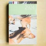 2924 Hunde und 10 Tierheime