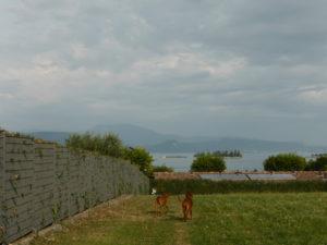 MeinFerienhund - Gardasee mit Hund