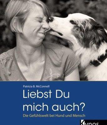 MeinFerienhund - Liebst Du mich auch