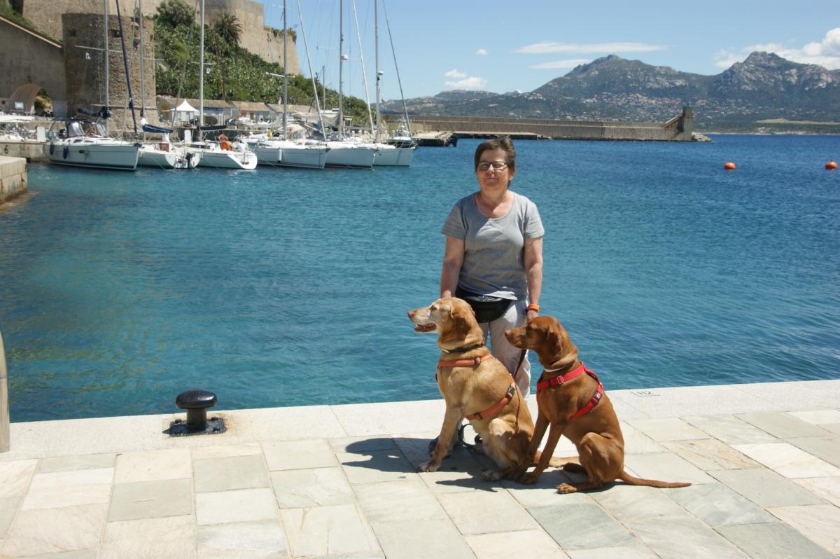 2016 Korsika 0514